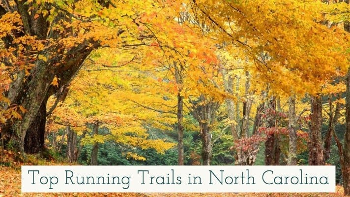 Top Running Trails in North Carolina
